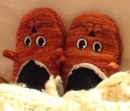 Christmas Slippers